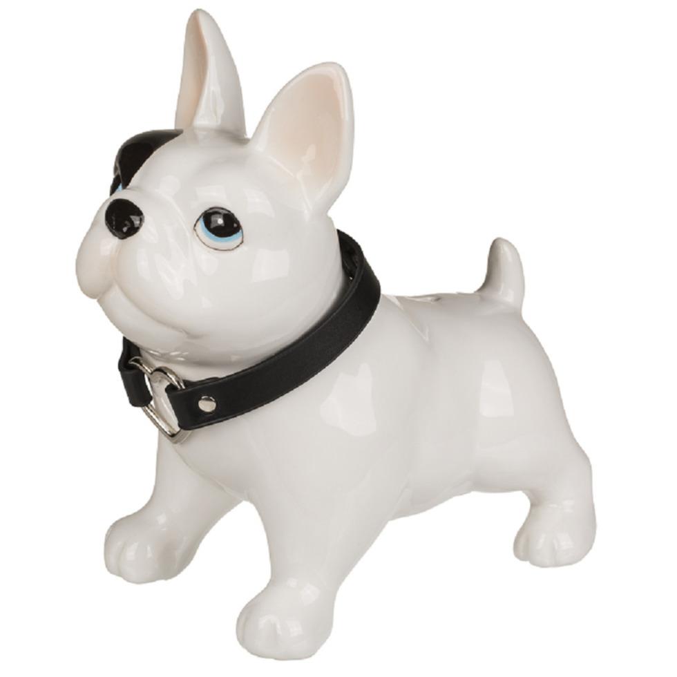 Spaarpotten pitbull terrier hond 21 x 19 cm
