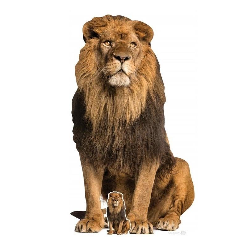 Star cut-out foto bord leeuw zittend 155 cm