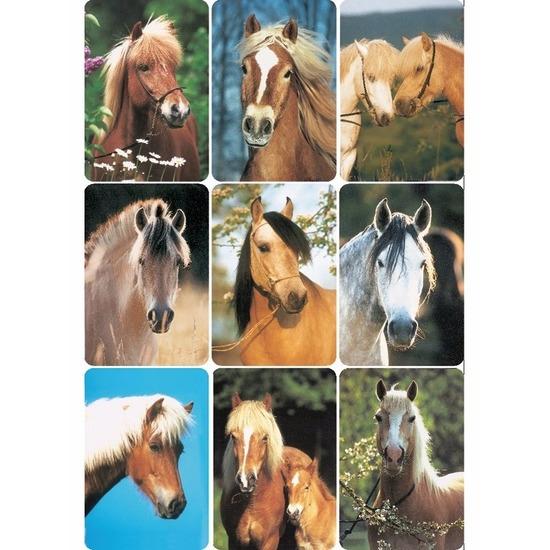 Stickers diverse paardenhoofden 3 vellen