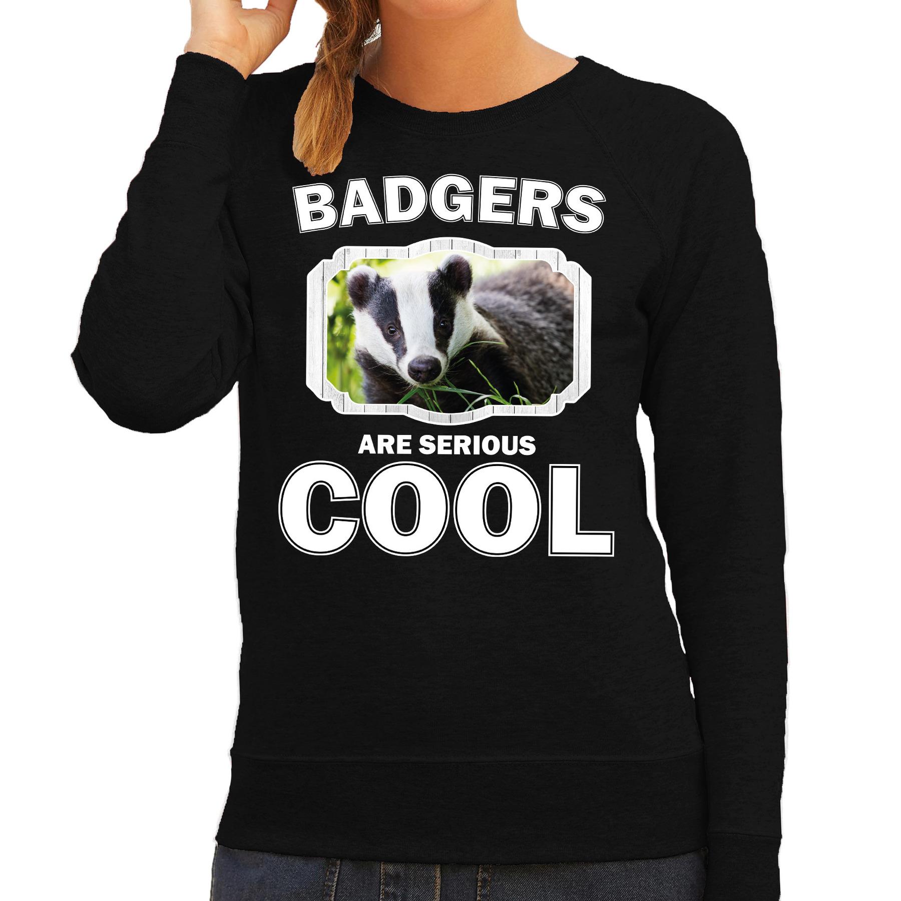 Sweater badgers are serious cool zwart dames - dassen/ das trui