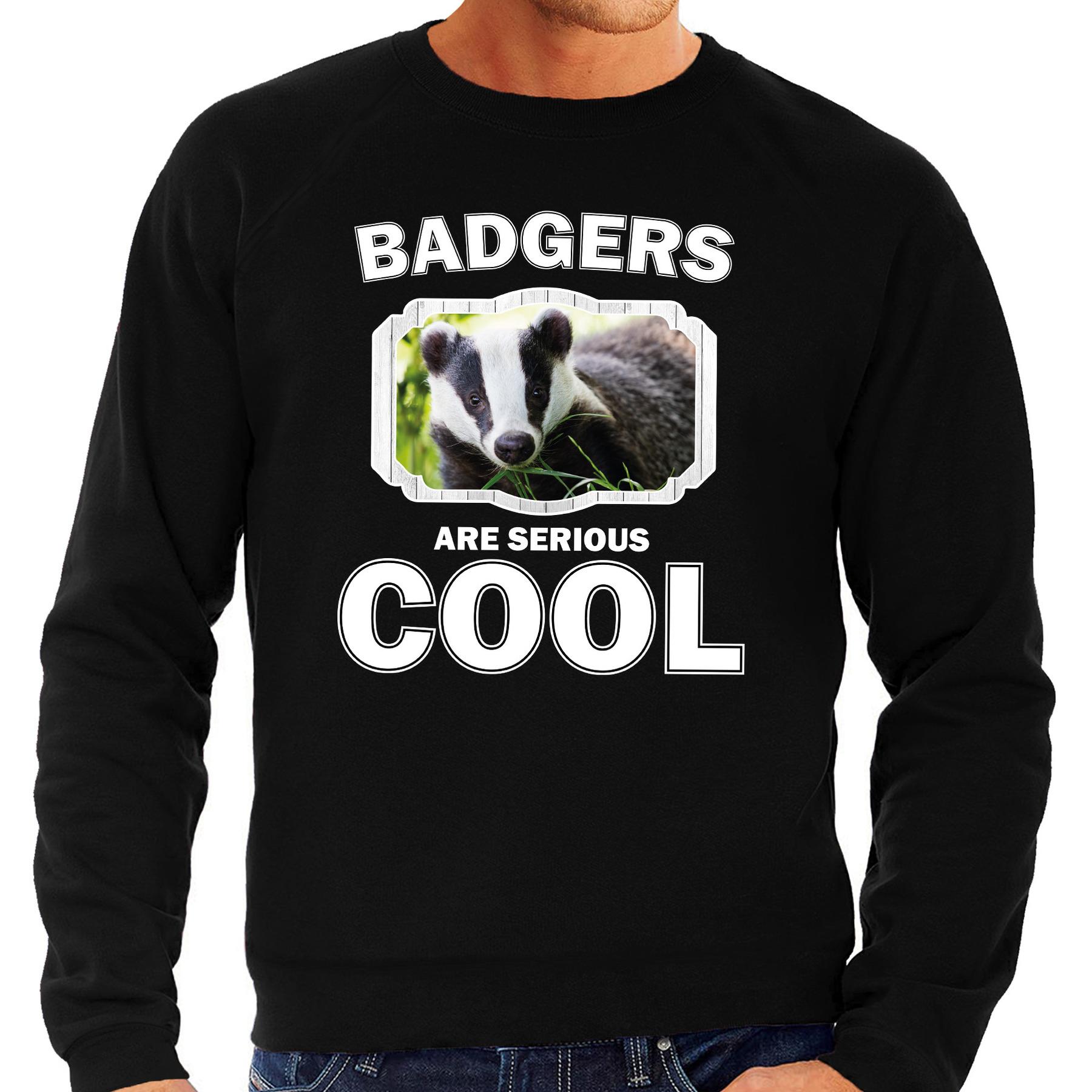 Sweater badgers are serious cool zwart heren - dassen/ das trui