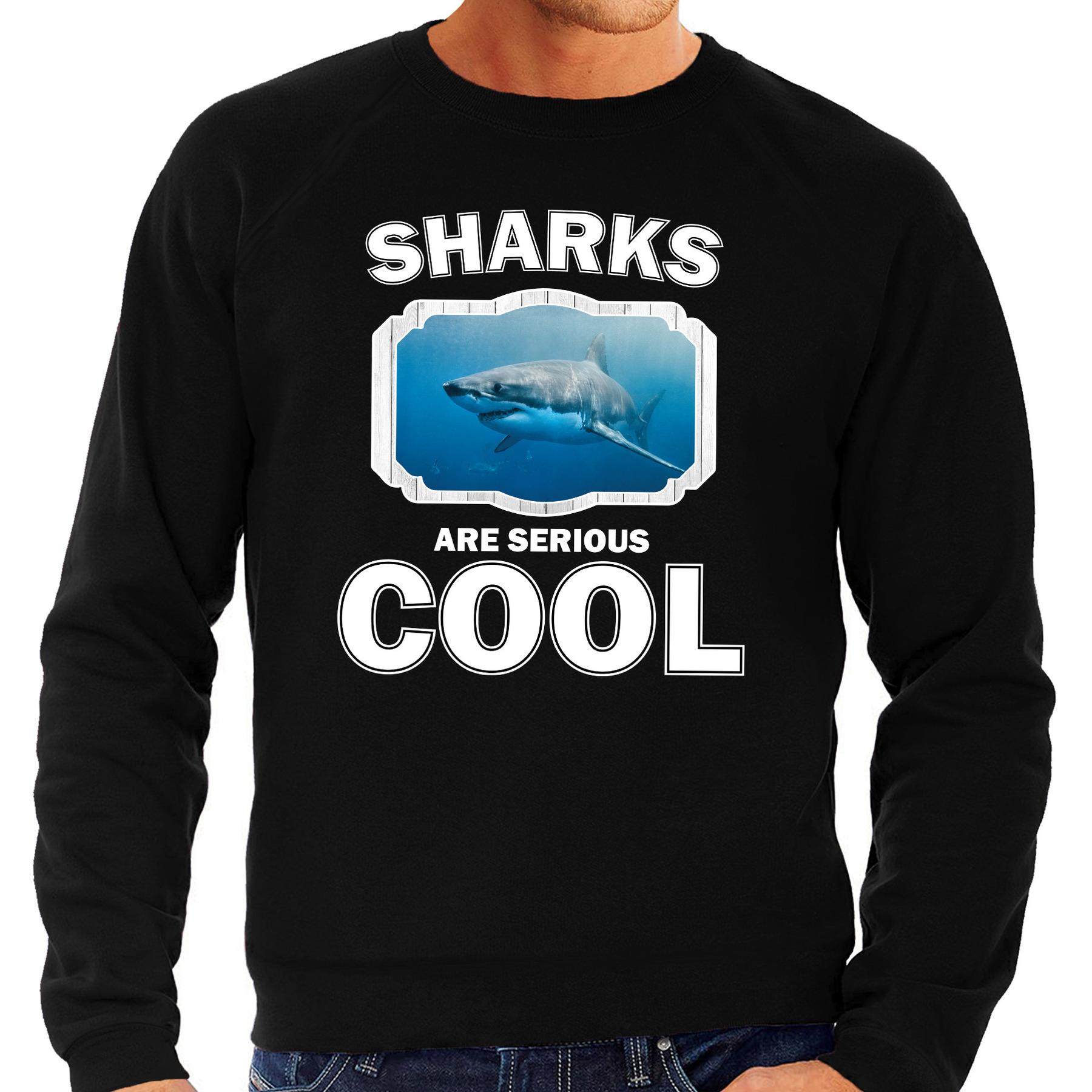 Sweater sharks are serious cool zwart heren - haaien/ haai trui