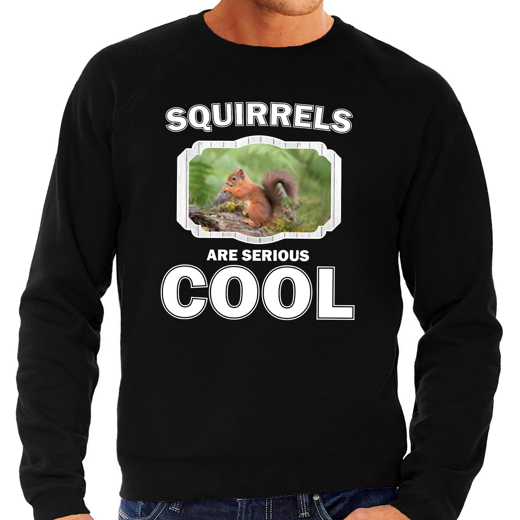 Sweater squirrels are serious cool zwart heren - eekhoorntjes/ eekhoorntje trui