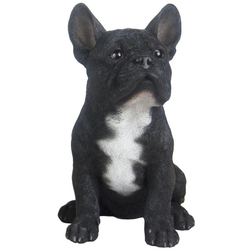 Tuinbeeld zwarte Franse Bulldog 29 cm