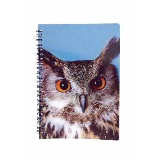 Uilen vogels thema schrift notitieboekje 3D 21cm