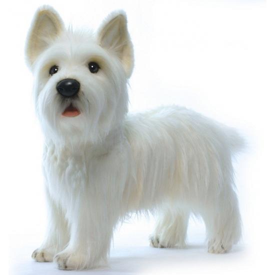 West Highland Terrier knuffels 50 cm